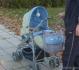 Комбинирана количка Candy Baby Max