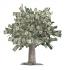 Лесни пари