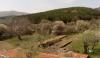 Ферма за червен калифорнийски червей и биохумус