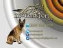 Транспортни услуги на животни в цялата страна