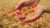 Купувам земеделска земя в област Велико Търново в селата........