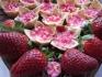 """Уникални диетични хапки от """"НОВА Кетъринг"""", кексчета със стевия и кремчета БЕЗ..."""