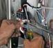 Монтиране на осветителни тела от електротехник. Смяна на осветително тяло в дома и...